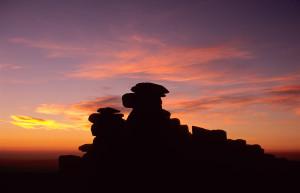 (D) Gt Staple Sunset sh